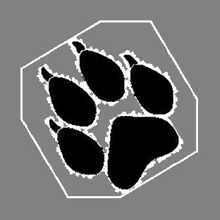 Sehr La sélection des chiens sur le caractère et la beauté XA05